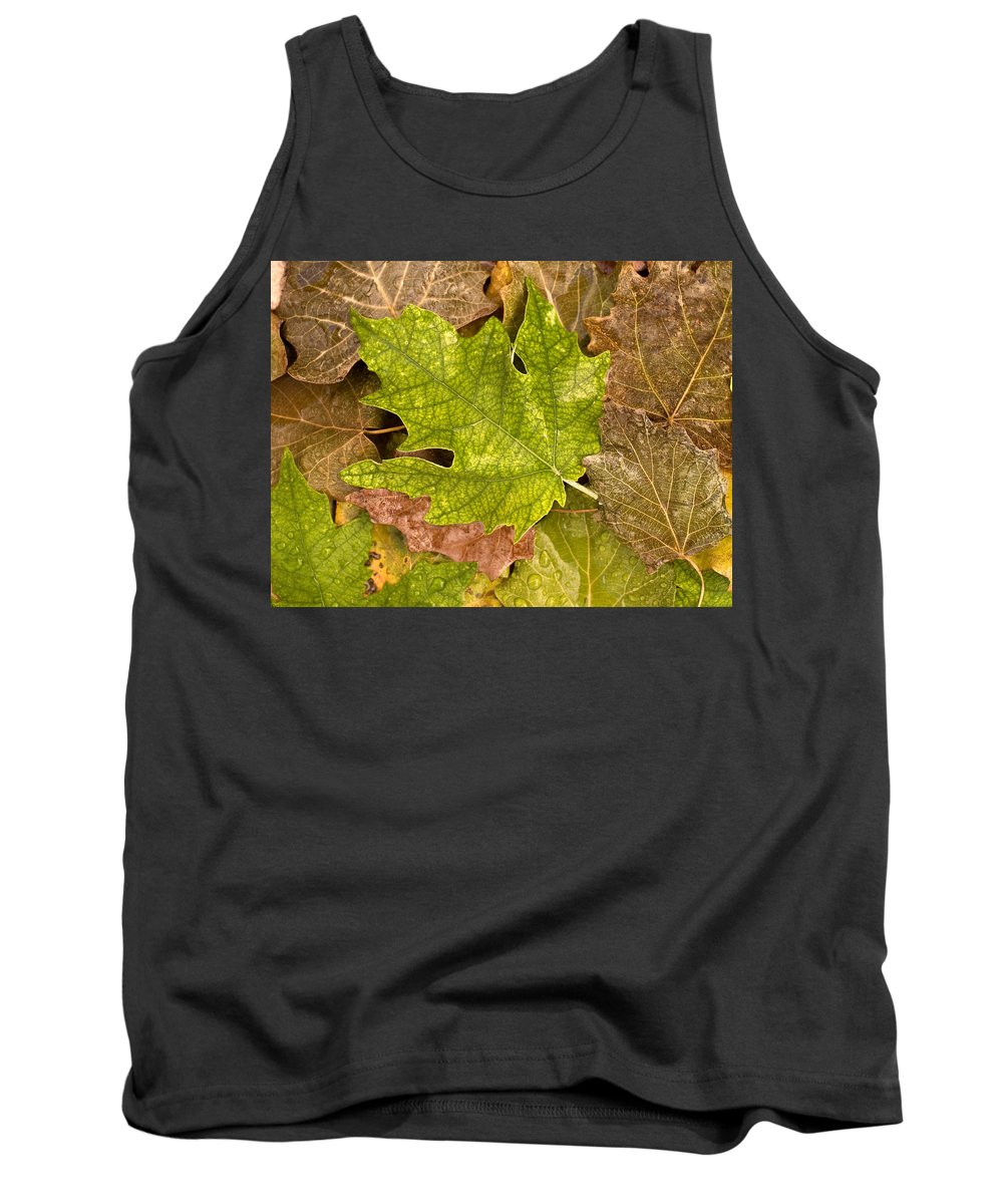 Nobody Tank Top featuring the photograph autumm is coming 3 - A carpet of autumn color leaves by Pedro Cardona Llambias