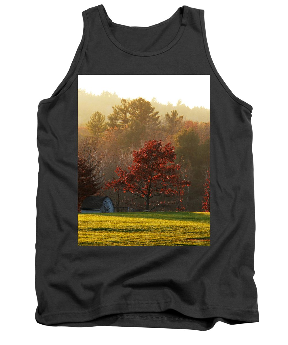 Autumn Foliage Tank Top featuring the photograph Autumn Ambers And Umbers by Natalie LaRocque
