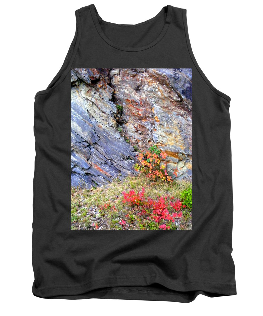 Landscapes Tank Top featuring the photograph Autumn And Rocks Vertical by Duane McCullough