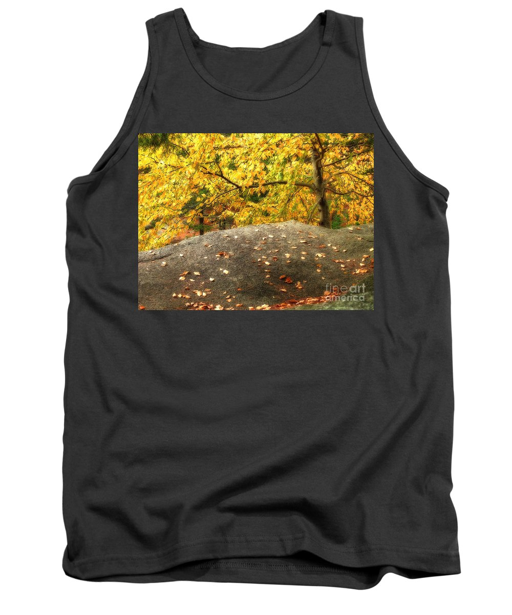 Autumn Tank Top featuring the photograph Autumn Boulder And Leaves by Mike Nellums