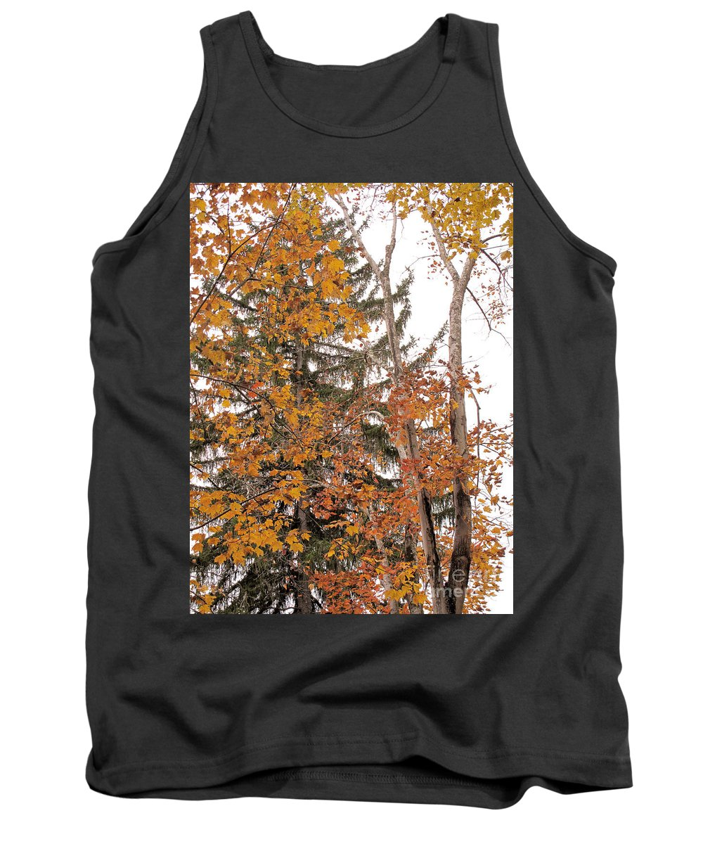 Autumn Tank Top featuring the photograph Autumn Gold by Sandy McIntire