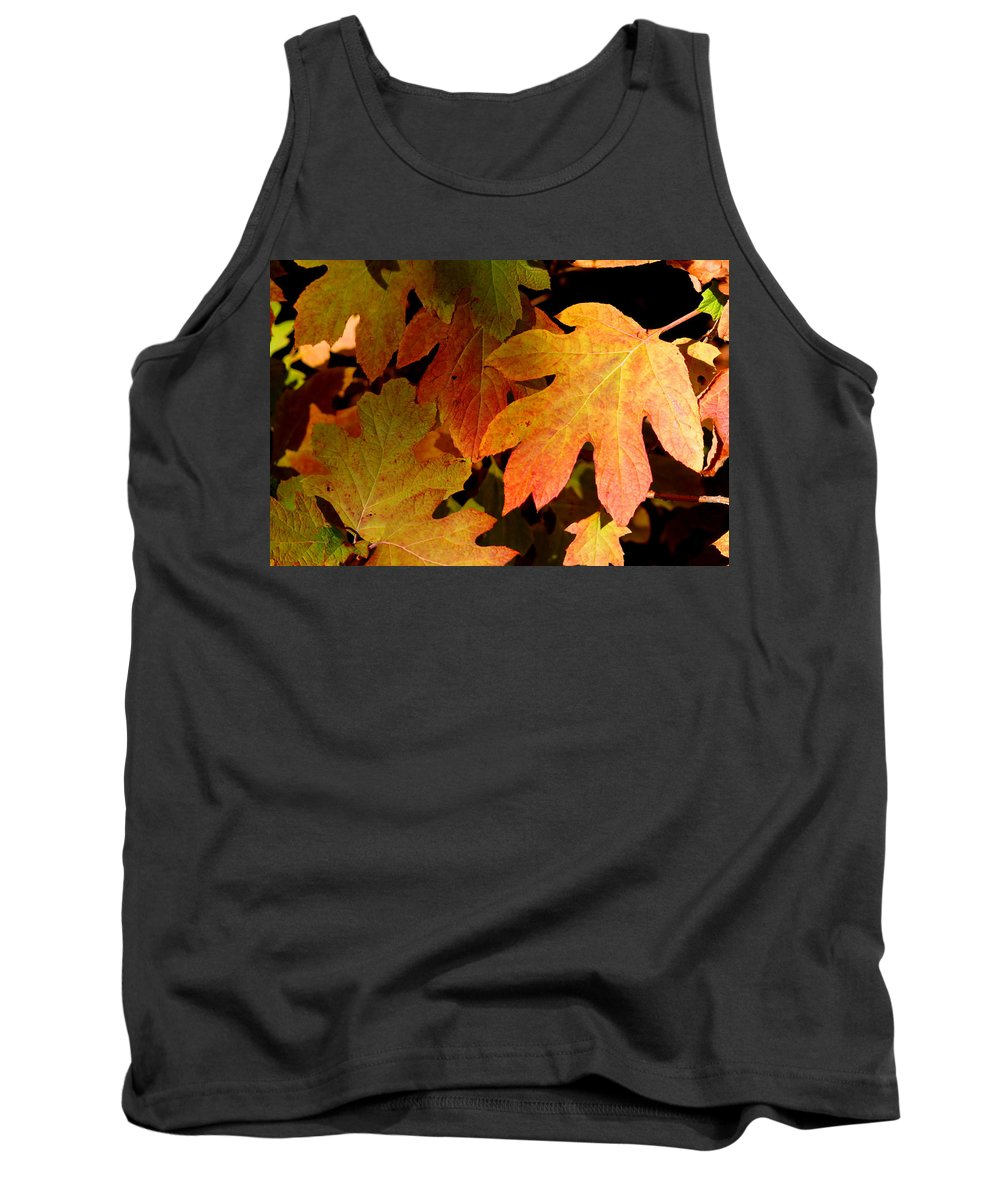 Autumn Tank Top featuring the photograph Autumn Hues by Living Color Photography Lorraine Lynch