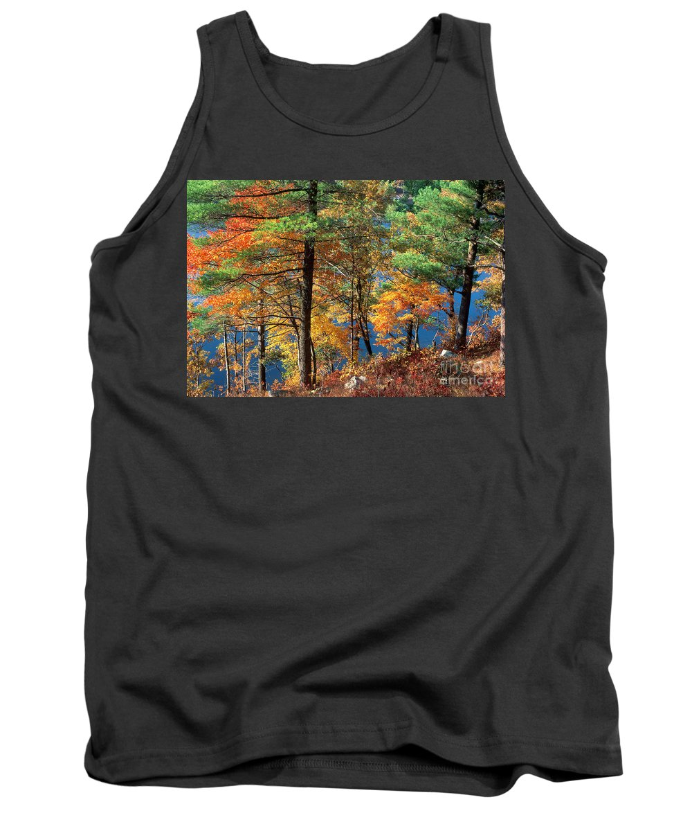 High Point State Park Tank Top featuring the photograph Autumn In New Jersey by Michael P Gadomski