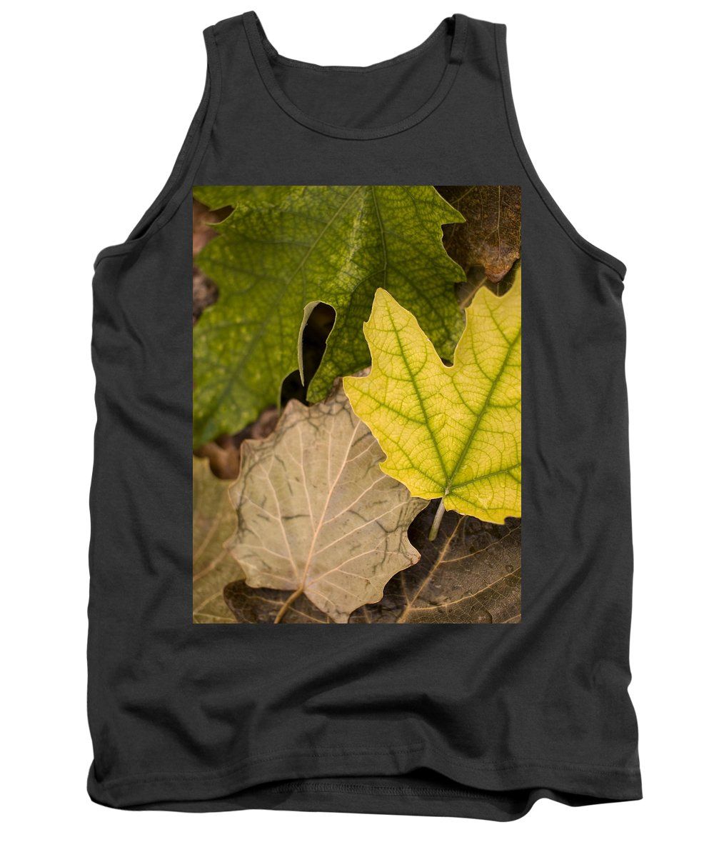 Nobody Tank Top featuring the photograph Autumn Is Coming 1 by Pedro Cardona Llambias