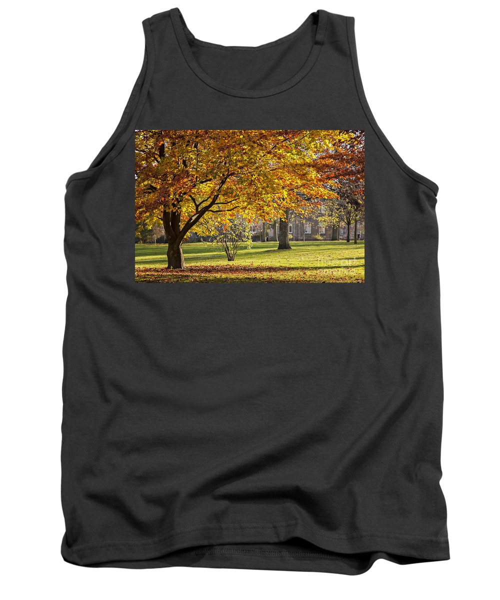 Nature Tank Top featuring the photograph Autumn Park by Sophie McAulay
