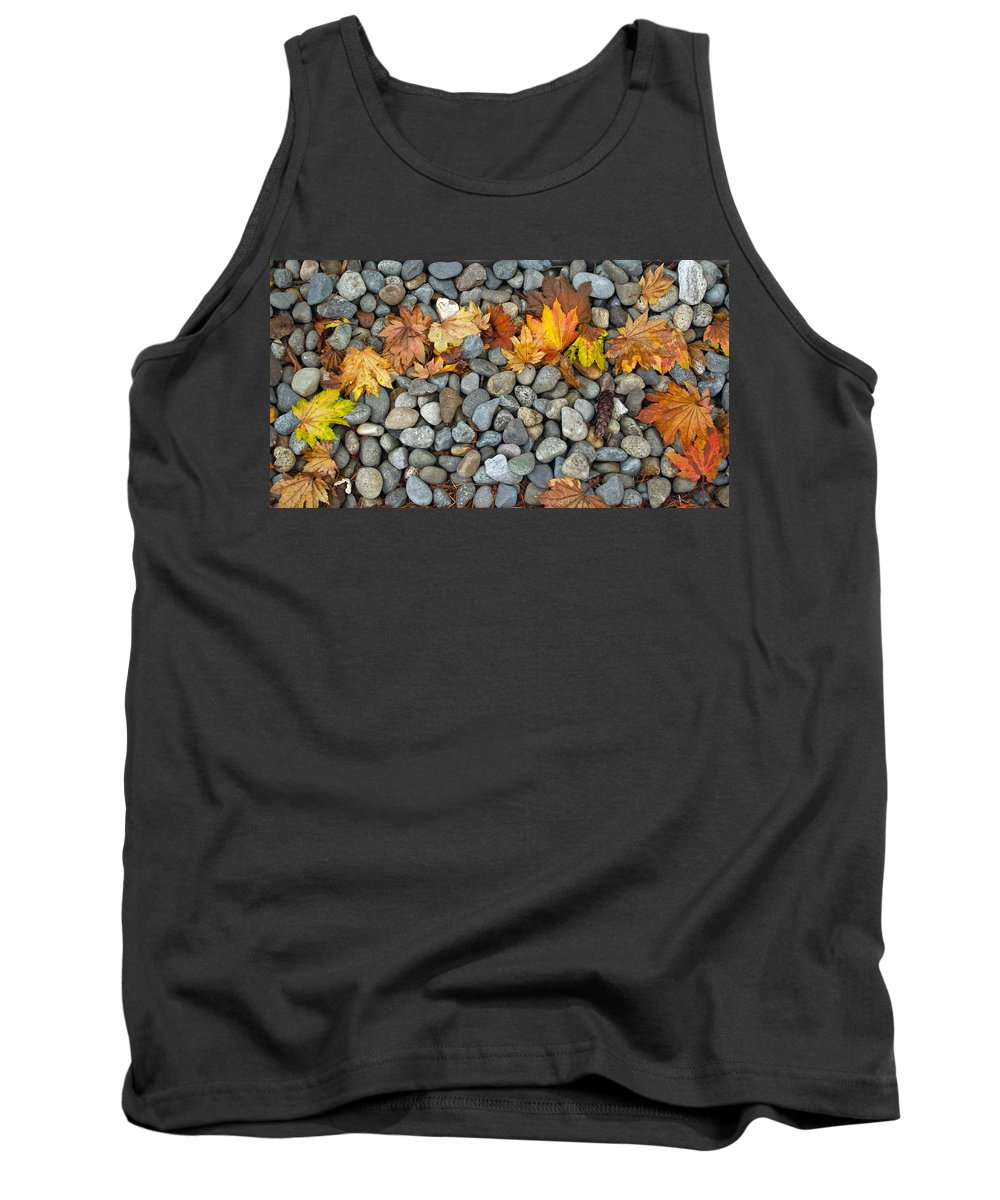 Autumn Tank Top featuring the photograph Autumn Rainbow by Tikvah's Hope