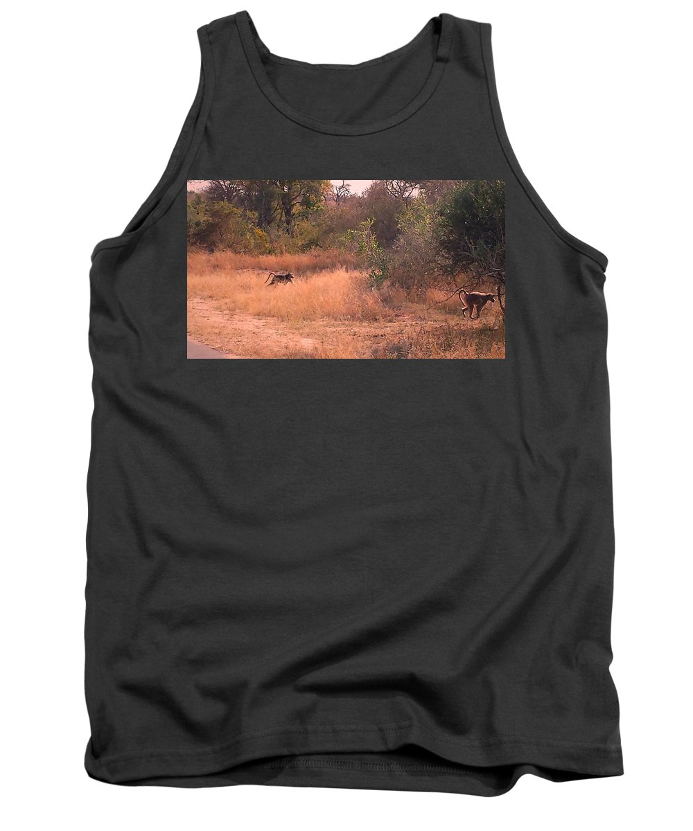 Baboons Tank Top featuring the photograph Baboons by Lisa Byrne
