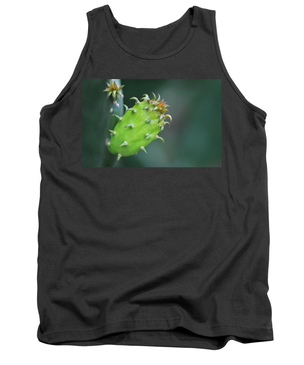 Macro Photography Tank Top featuring the photograph Baby Cactus - Macro Photography By Sharon Cummings by Sharon Cummings