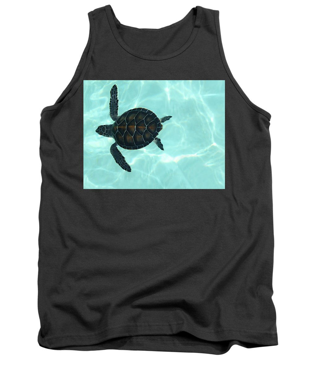 Baby Sea Turtle Tank Top featuring the photograph Baby Sea Turtle by Ellen Henneke