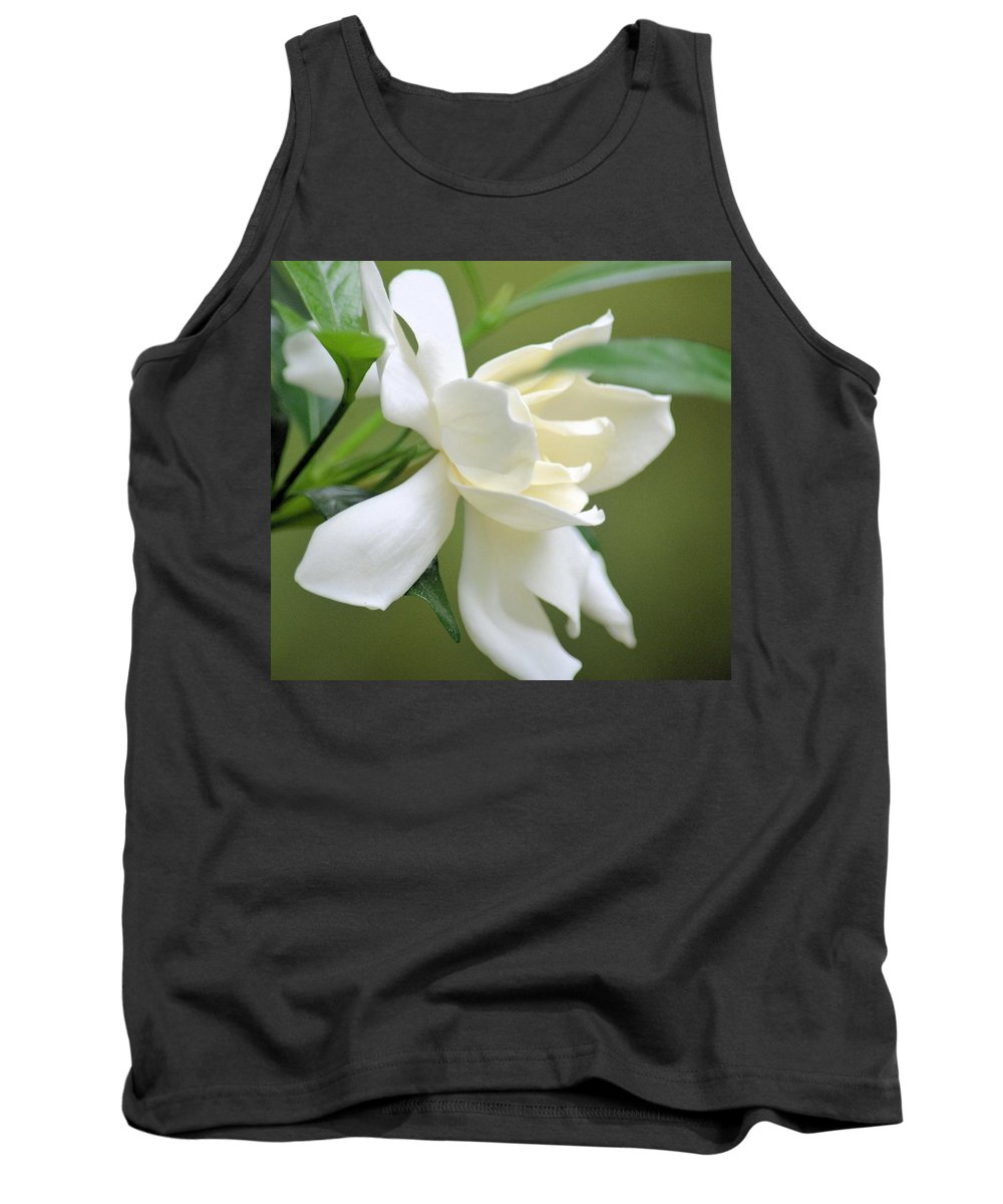 Baby Soft Tank Top featuring the photograph Baby Soft by Maria Urso