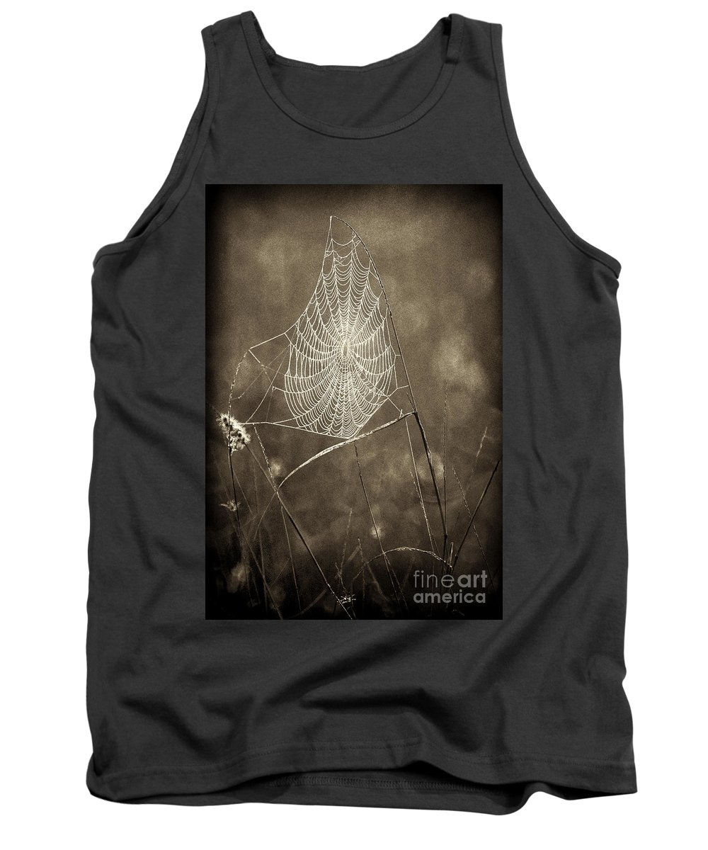 Wildlife Tank Top featuring the photograph Backlit Spider Web In Sepia Tones by Dave Welling
