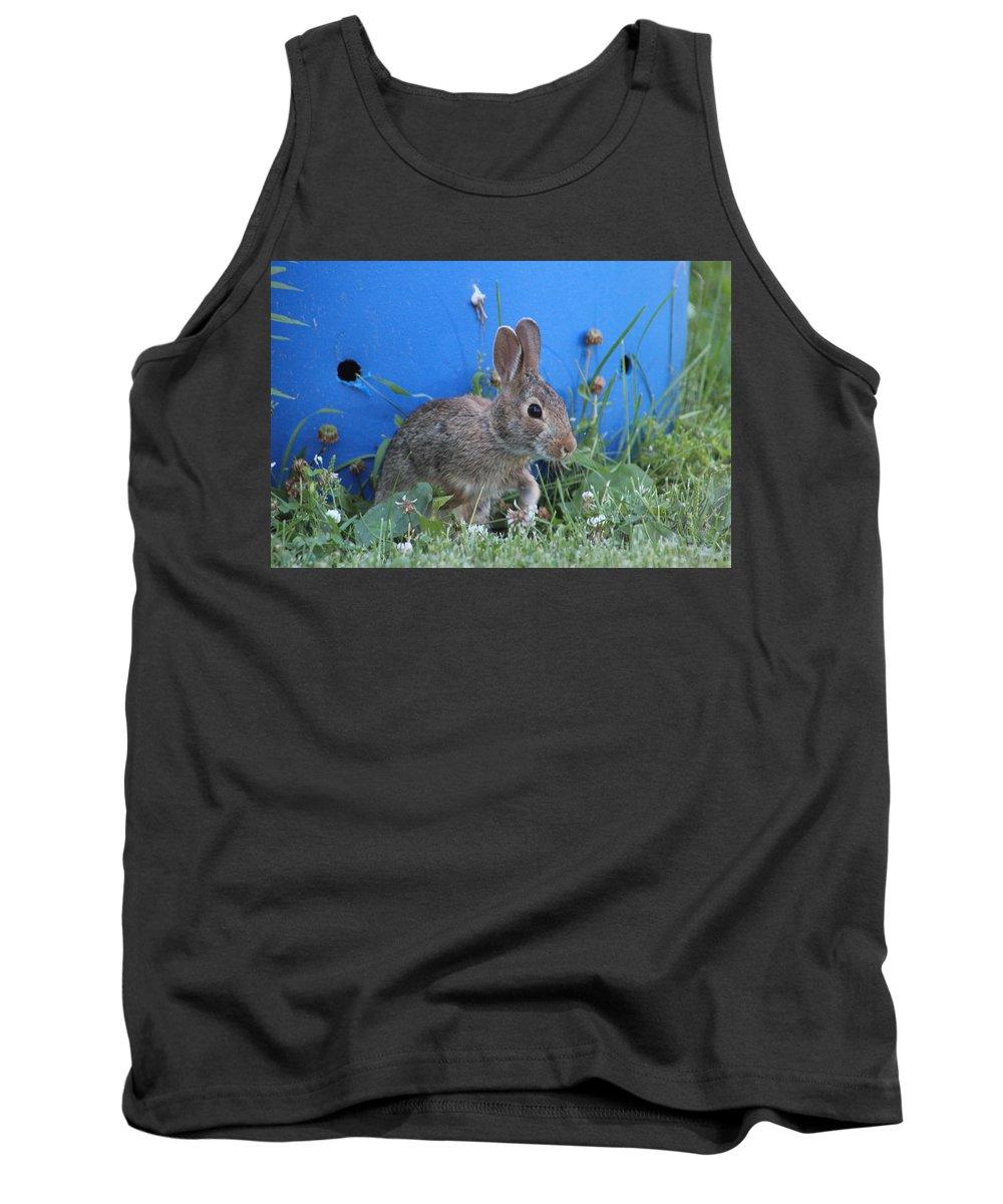 Rabbit Tank Top featuring the photograph Backyard Bunny by Terry Lewey