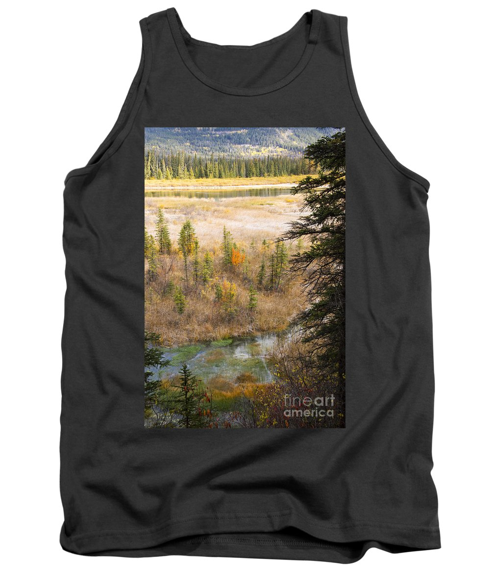 Banff National Park Canada Parks Hot Springs Leaf Autumn Leaves Water Fall Colors Tank Top featuring the photograph Banff Spring Runoff by Bob Phillips