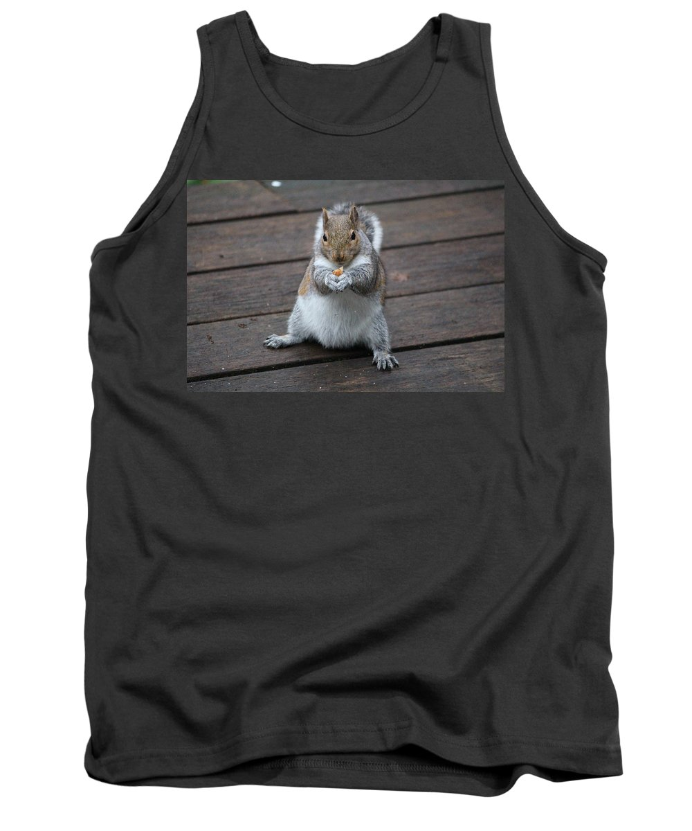 Animals Tank Top featuring the photograph Beast Mode Squirrel by Kym Backland