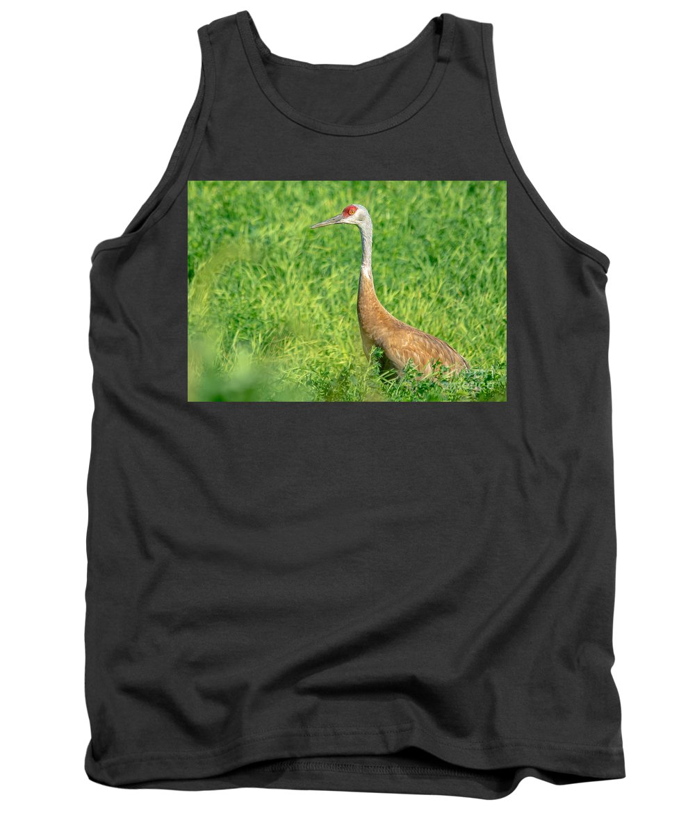 Field Tank Top featuring the photograph Beautiful Crane by Cheryl Baxter