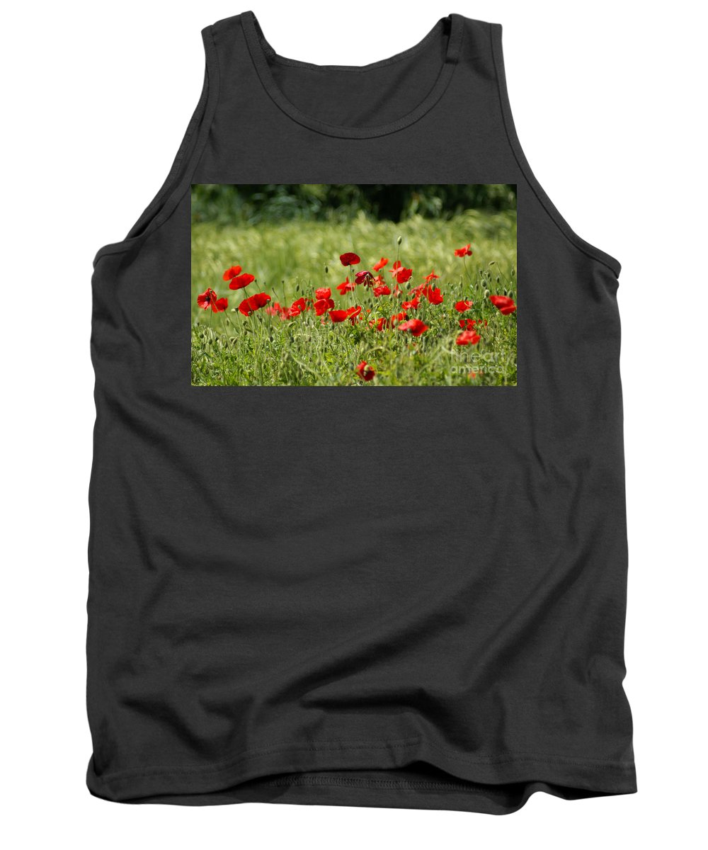 Poppies Tank Top featuring the photograph Beautiful Poppies 1 by Carol Lynch