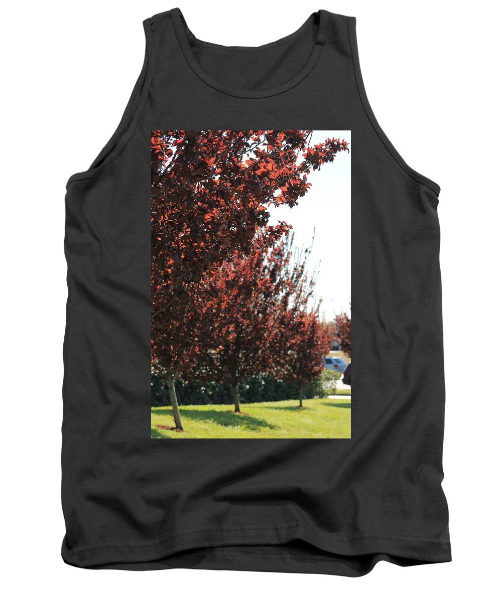 Beautiful Red Trees Tank Top featuring the photograph Beautiful Japanese Maple by Mary Koval