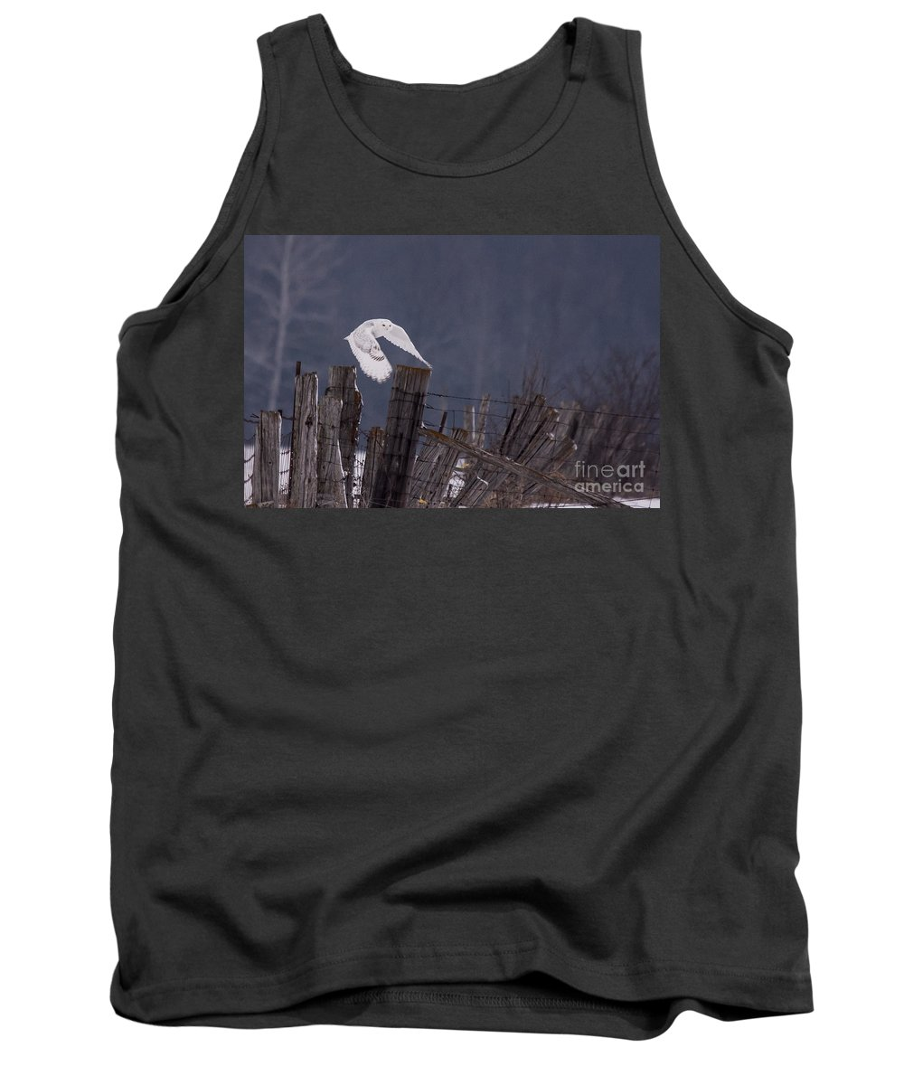 Field Tank Top featuring the photograph Beautiful Snowy Owl Flying by Cheryl Baxter