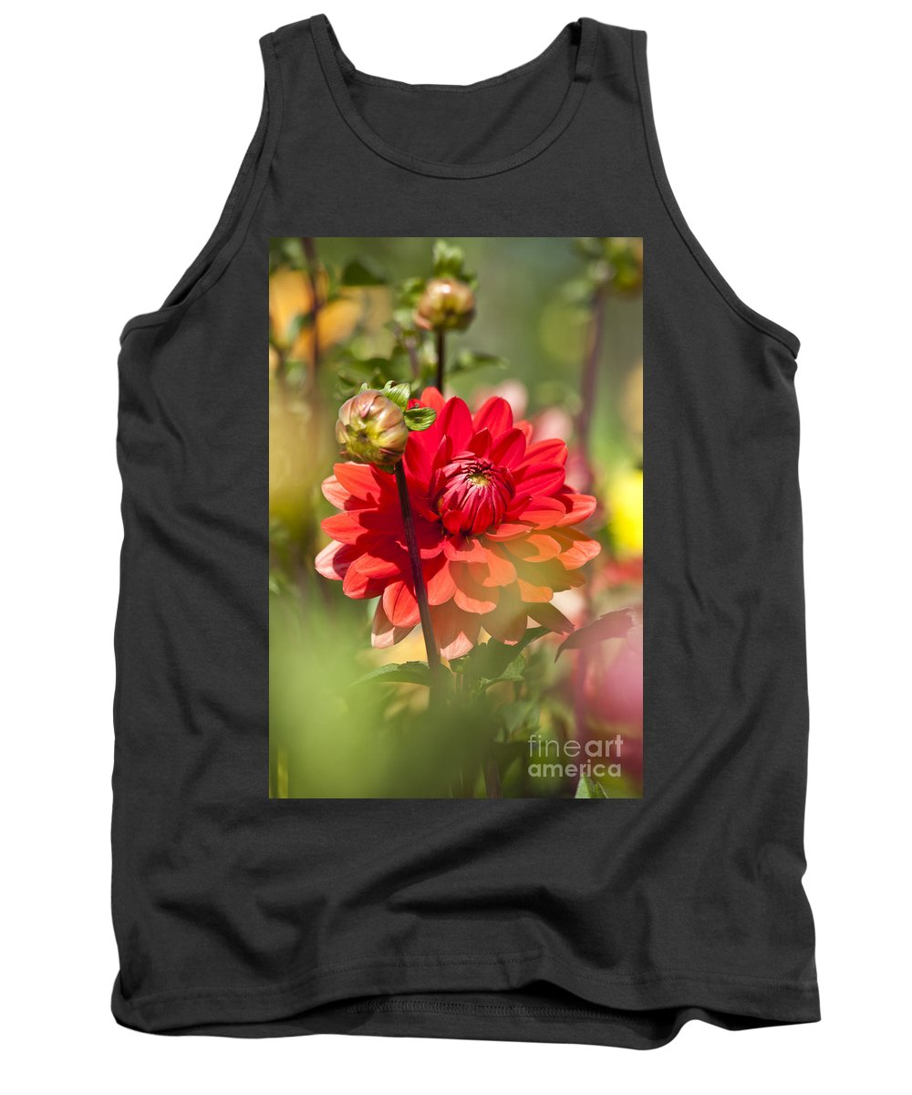 Heiko Tank Top featuring the photograph Behind The Scene by Heiko Koehrer-Wagner