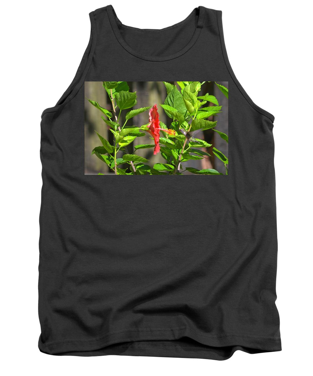 Best Tank Top featuring the photograph Best Close-up Green Hummingbird On Red Hibiscus Flower. by Jeff at JSJ Photography