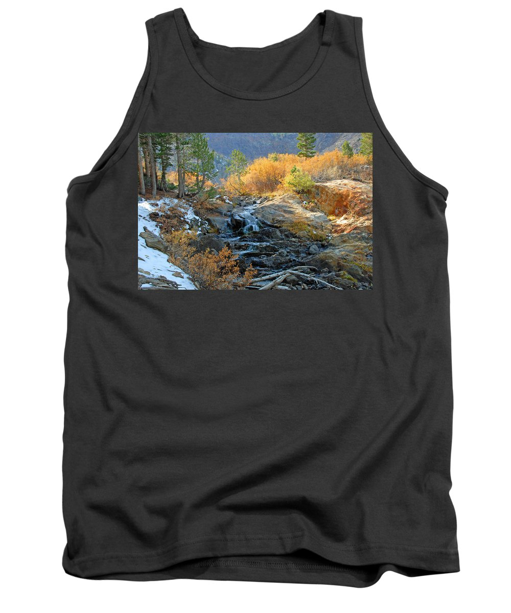 Fall Tank Top featuring the photograph Between The Virginias by Lynn Bauer