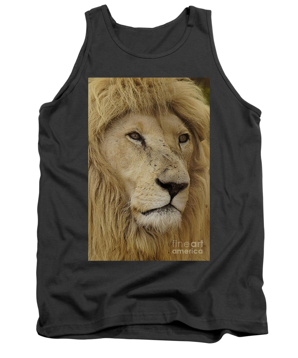 Big Cats Tank Top featuring the photograph Big Cats 15 by Ben Yassa