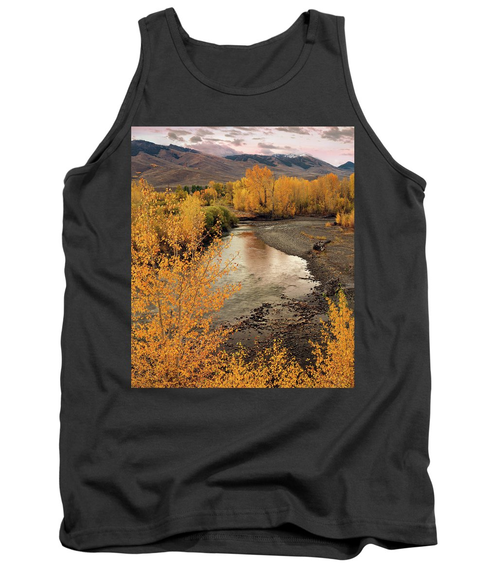 Autumn Tank Top featuring the photograph Big Lost River In Autumn by Leland D Howard