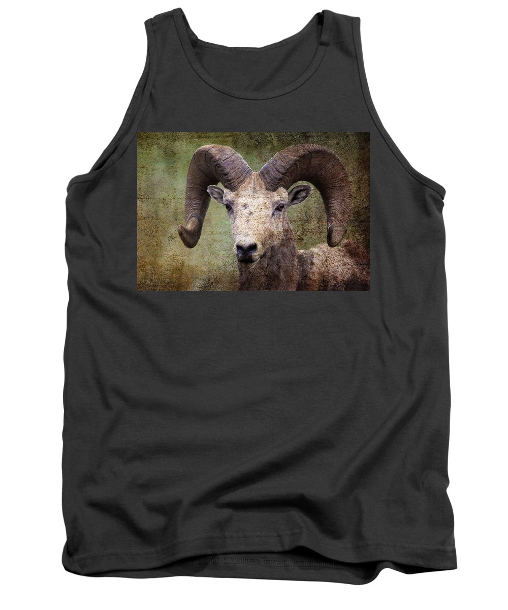 Bighorn Sheep Tank Top featuring the photograph Bighorn Country by Athena Mckinzie