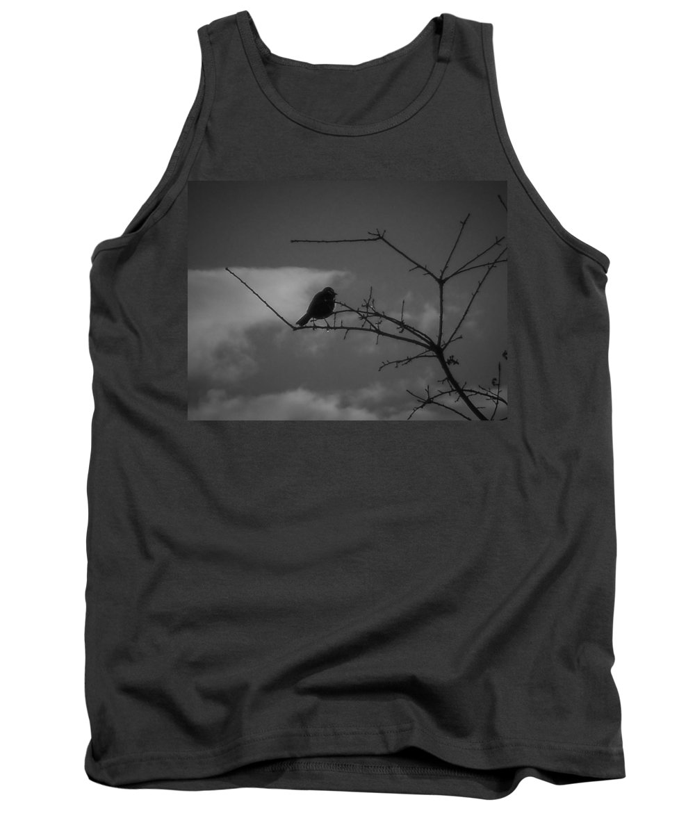 Photography Prints Tank Top featuring the photograph Black Bird by Shawn Brandon