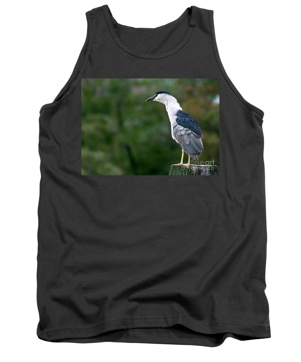 Bird Tank Top featuring the photograph Black Crowned Night Heron by Joan McCool