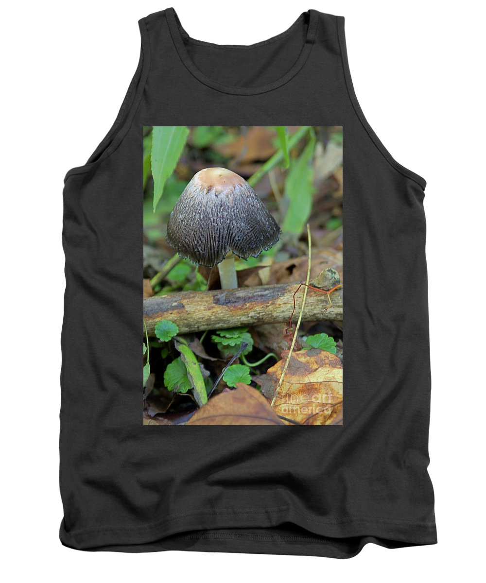 Brown Tank Top featuring the photograph Black Lace by Alan Look