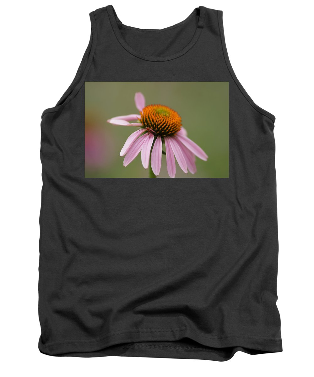Cone Flowers Tank Top featuring the photograph Blending In by Ernie Echols