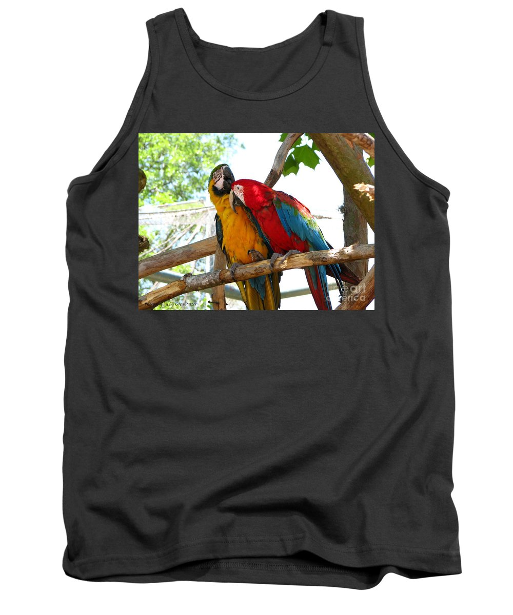 Patzer Tank Top featuring the photograph Blue And Gold by Greg Patzer