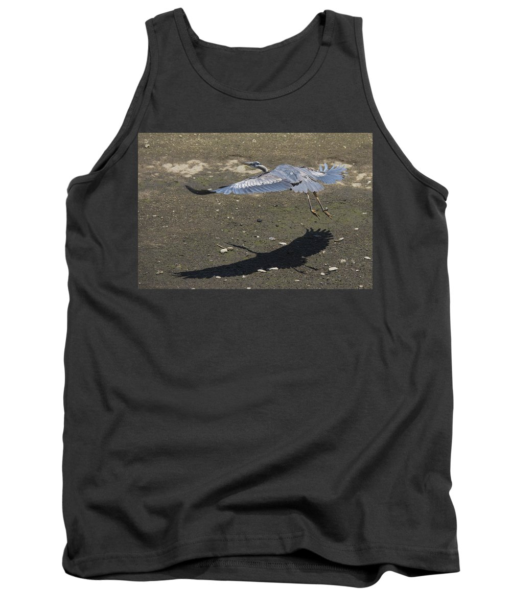 Heron Tank Top featuring the photograph Blue Heron And Shadow by Bruce Frye
