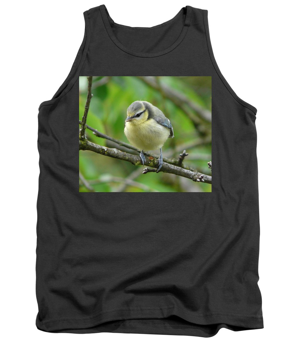 Bird Tank Top featuring the photograph Blue Tit In A Cherry Tree by Valerie Ornstein