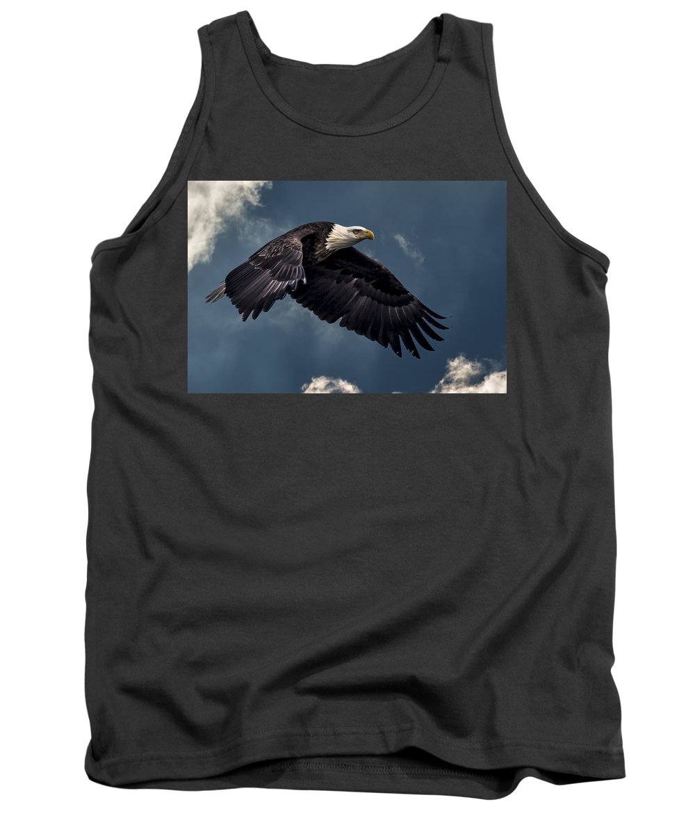 Alaska Tank Top featuring the photograph Bold by Jack R Perry