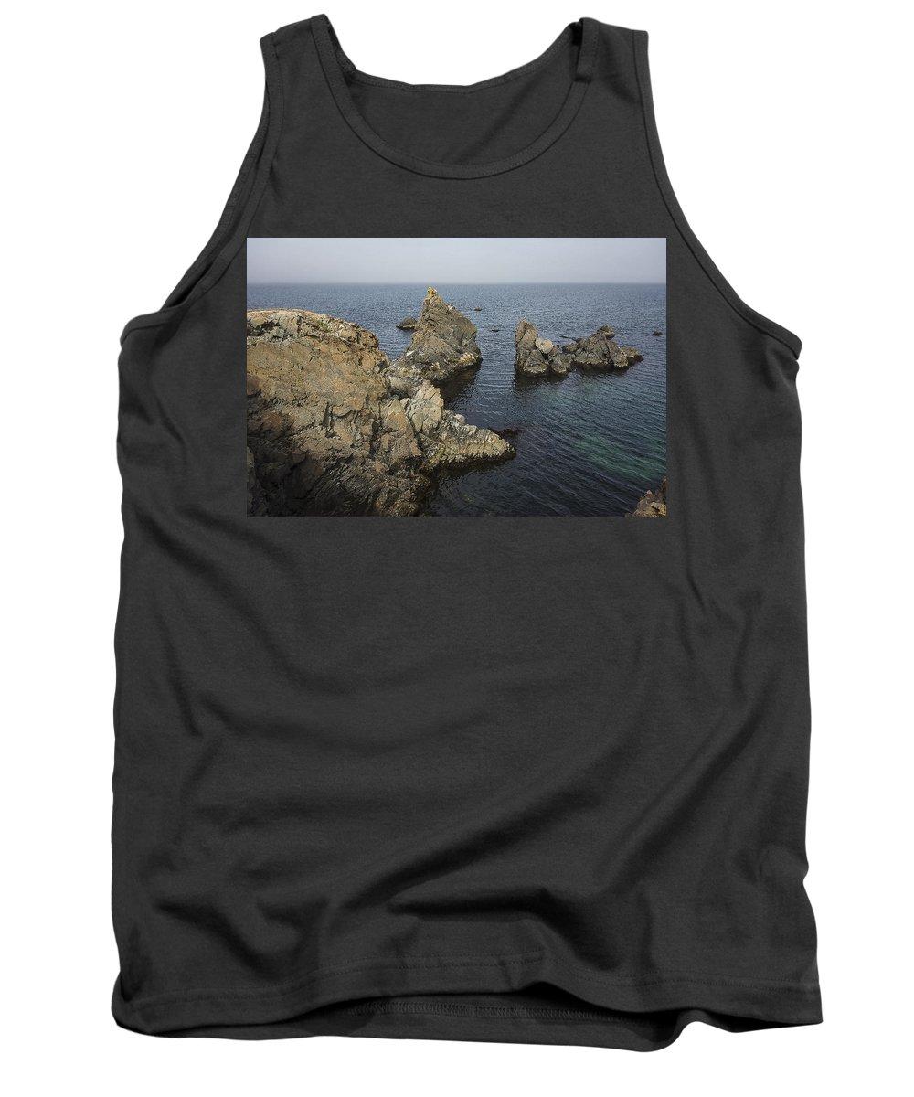 Newfoundland Tank Top featuring the photograph Bonavista Rocks by David Stone