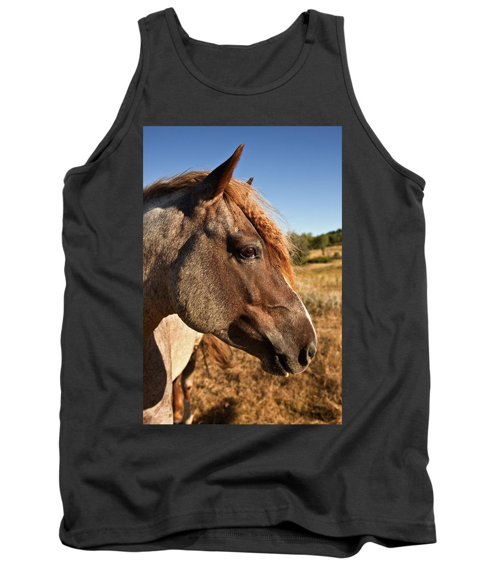 Horse Tank Top featuring the photograph Braids by Jack Milchanowski