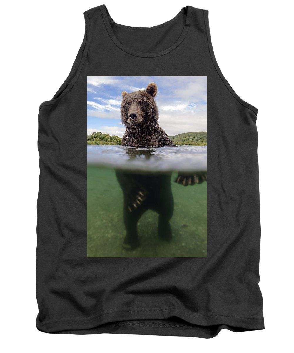 Feb0514 Tank Top featuring the photograph Brown Bear In River Kamchatka Russia by Sergey Gorshkov