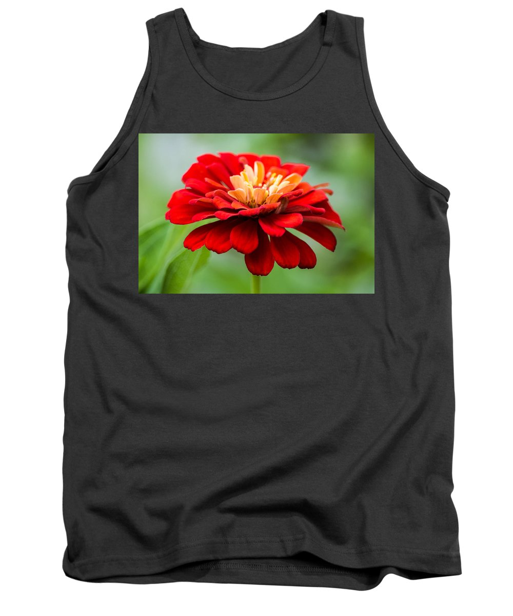 Zinnia Tank Top featuring the photograph Bursts Of Color by Parker Cunningham