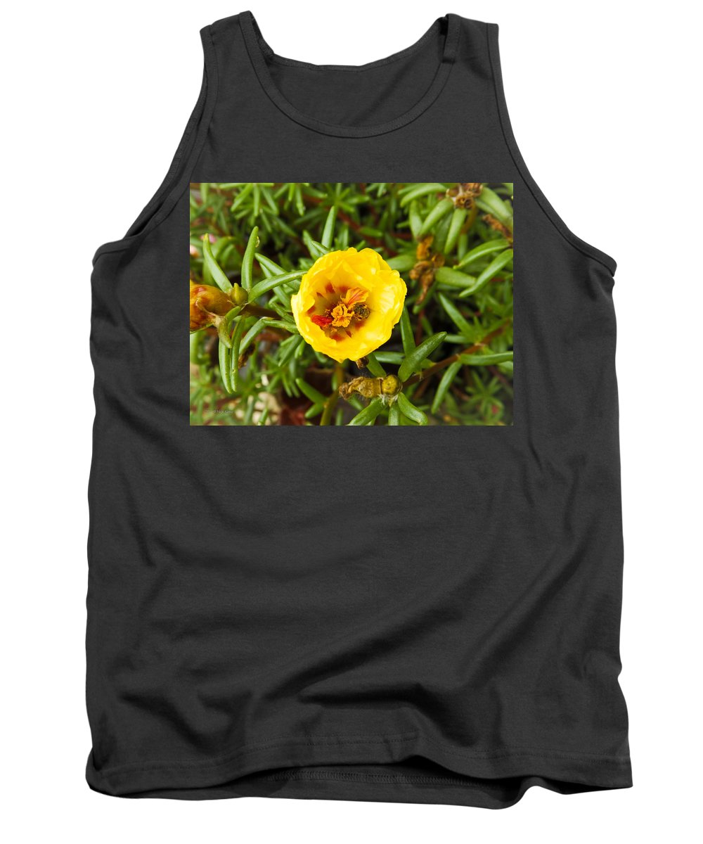 Flower Tank Top featuring the photograph Busy Bee by Nick Kirby