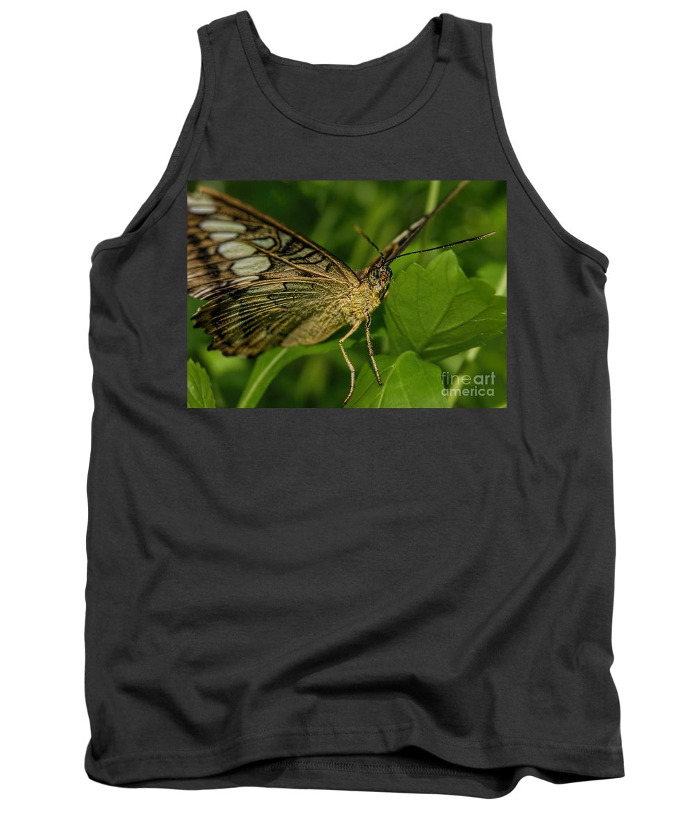 Butterfly Tank Top featuring the photograph Butterfly 2 by Olga Hamilton