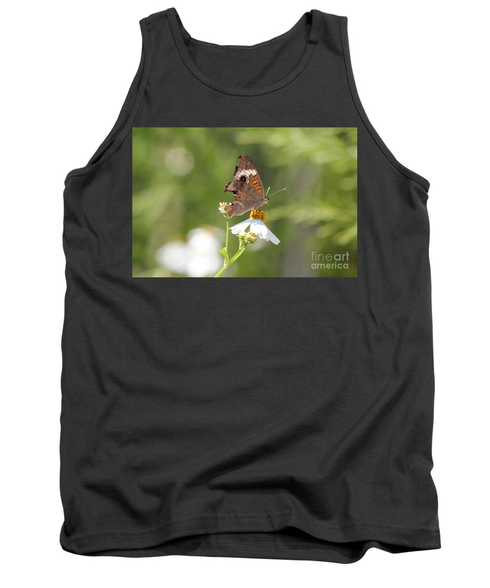 Butterfly Tank Top featuring the photograph Butterfly 4 by Michelle Powell
