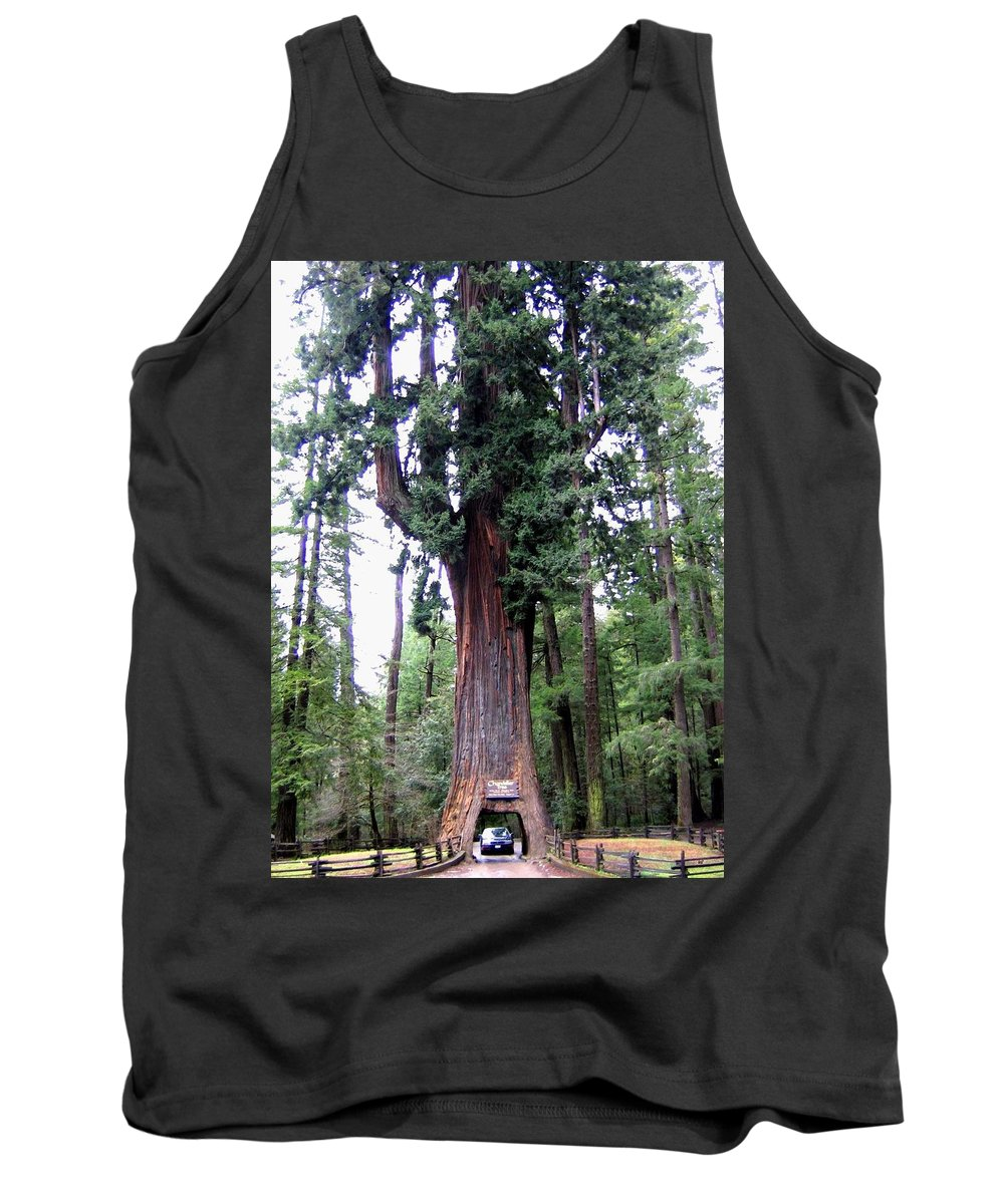 California Redwoods 6 Tank Top featuring the digital art California Redwoods 6 by Will Borden