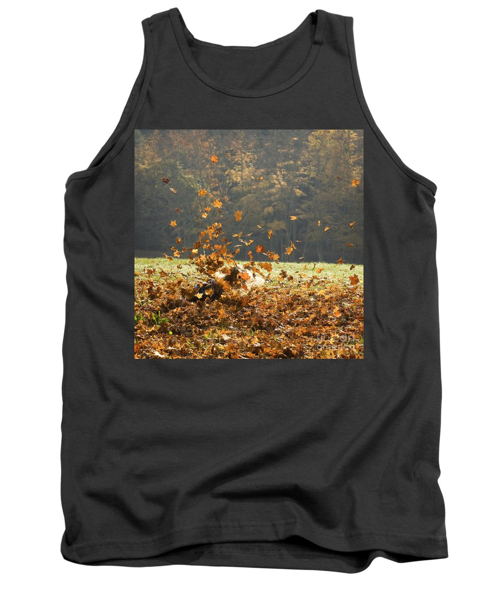Autumn Tank Top featuring the photograph Can You See Me? by Carol Lynn Coronios
