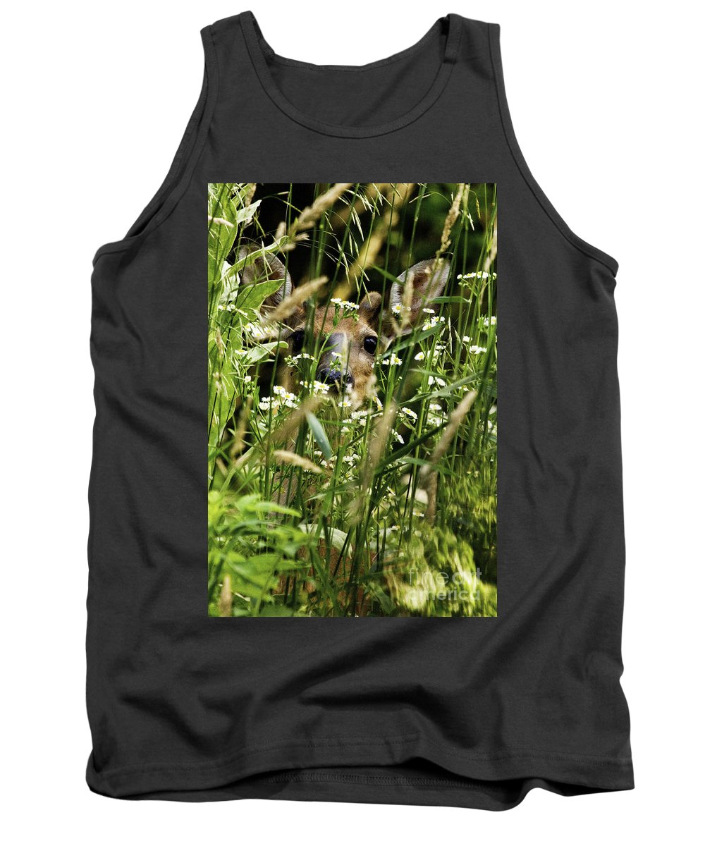 White Tail Deer Tank Top featuring the photograph Can You See Me by Jan Killian