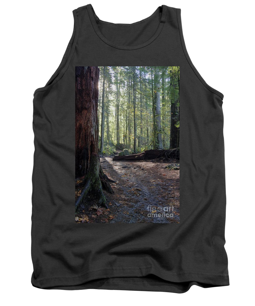 Landscape Tank Top featuring the photograph Cascades Forest Path by Darleen Stry