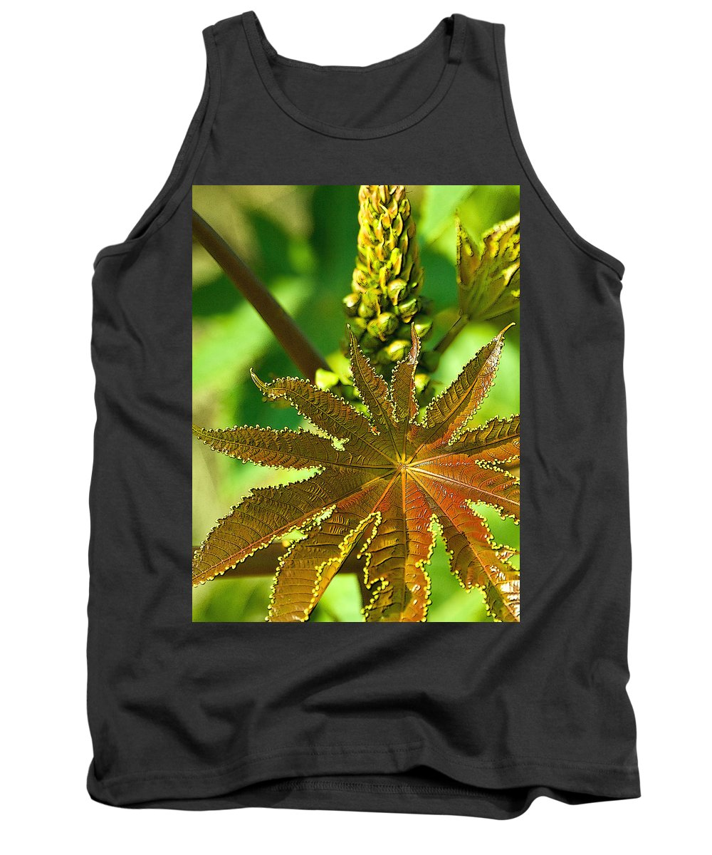 Ricinus Communis Tank Top featuring the photograph Castor Bean Leaf And Pod by Dan Sabin