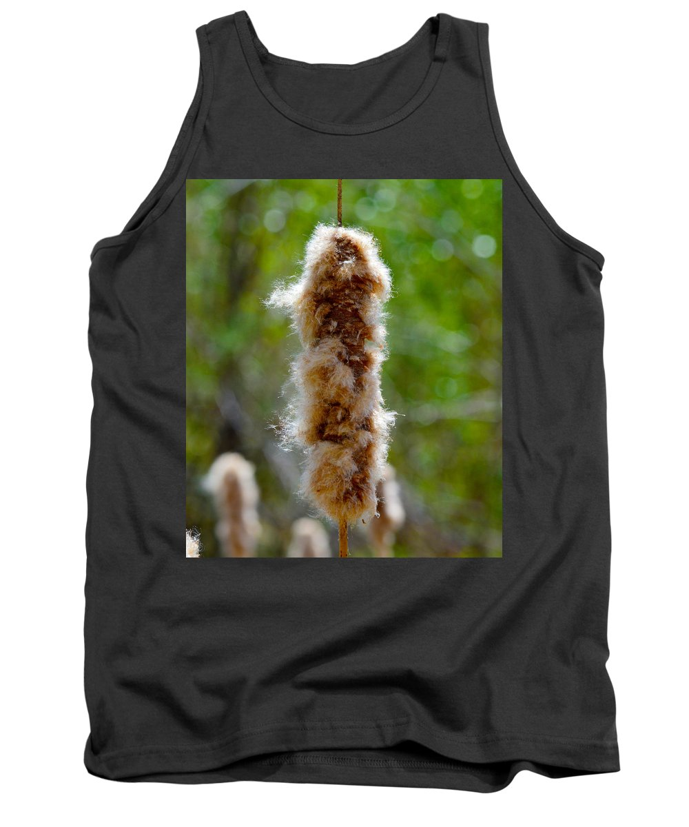 Fuzz Tank Top featuring the photograph Cat Tail Fuzz by Brent Dolliver
