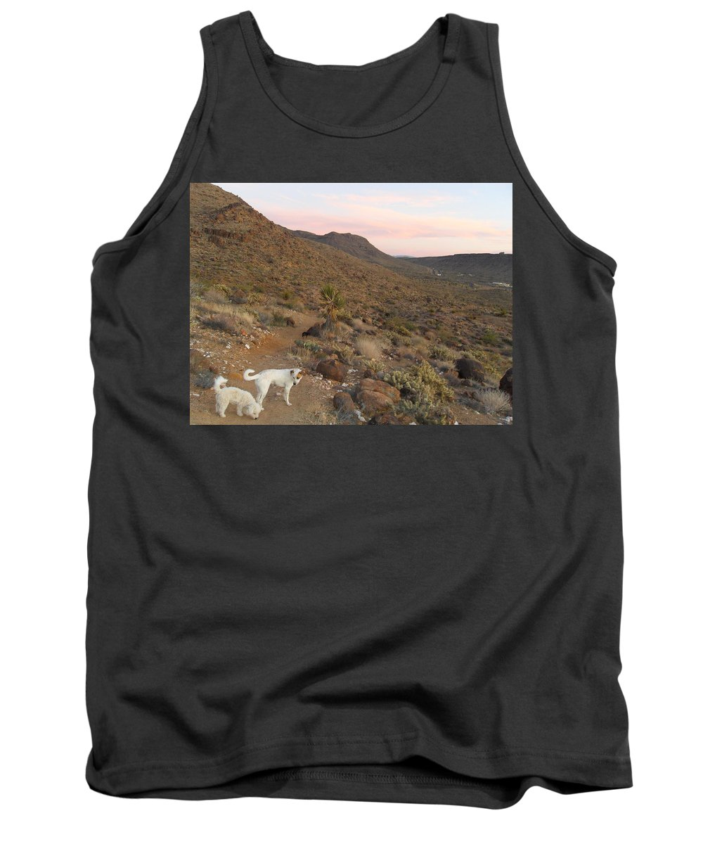 Landscape Tank Top featuring the photograph Ceaser, Mocha, And Chico In The Cerbat Mountains by James Welch